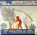 chadouf-peintureegypt.jpg