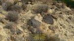 2016-09-13-fuente-alamo-jordana-101-copie