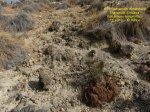 2016-09-13-fuente-alamo-jordana-61-copie